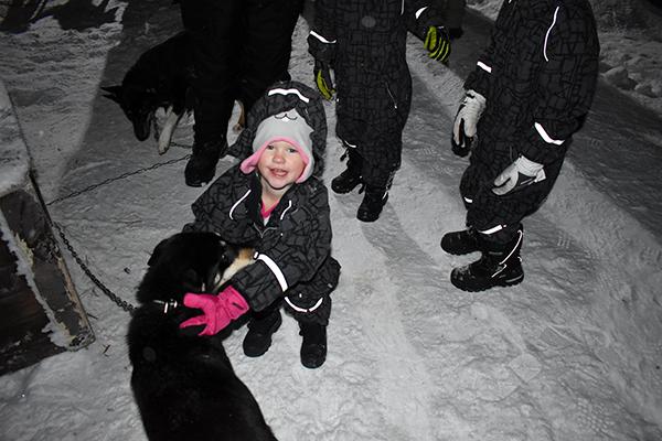husky dog sledding, dog sledding, Tromsø, Villmarkssenter, Authentic Scandinavia, Hurtigruten, puppies, snow, ice, polar night, diapersonaplane, diapers on a plane, family travel, traveling with kids, creating family adventures, flying standby