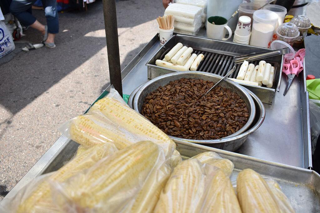 Bugs for lunch at Namdaemun Market in Seoul, South Korea