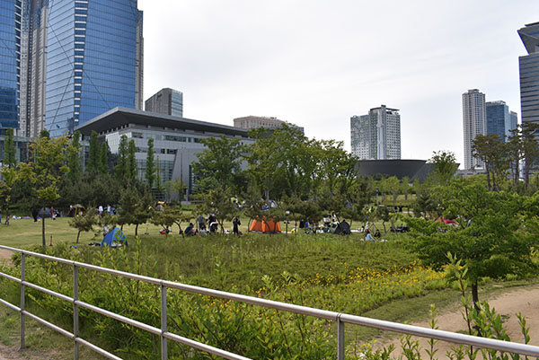 Camping in Central Park Songdo with Kids in Incheon, Korea